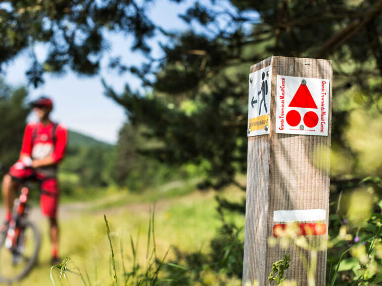 Signposting of mountain bike routes